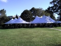 Where to rent 30x 60, WHITE - CENTURY POLE TENT in Chicago IL